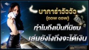 บาคาร่าวัววัว (cow cow) ทำไมถึงเป็นที่นิยม เล่นยังไงถึงจะได้เงิน Biogaming1