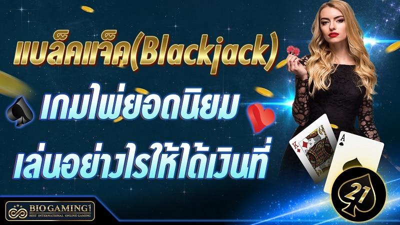 แบล็คแจ็ค(Blackjack) เกมไพ่ยอดนิยม เล่นอย่างไรให้ได้เงินที่ Bio gaming